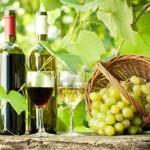 Argentina será sede del 37º Congreso Mundial de la Viña y el Vino