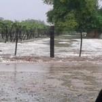 Estiman como graves los daños provocados por el granizo en los viñedos