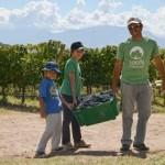 Segunda Vendimia Solidaria, Valles Calchaquíes