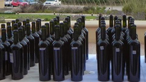 Denuncian que se envasan vinos de Cuyo y los venden como salteños