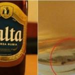 La Cerveza Salta viene con cucaracha incluida dentro de la botella