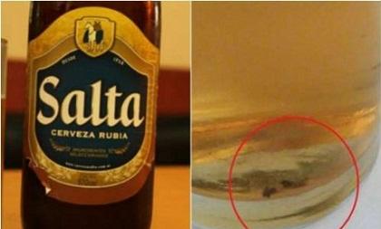 Una cucaracha dentro de la botella de Cerveza Salta