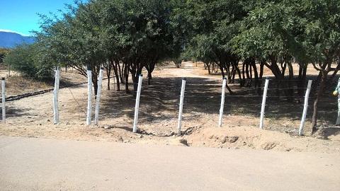 El camino provincial de acceso a las 32 hectáreas clausurado por la usurpación.