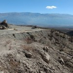 Liberan el cóndor andino encontrado moribundo en El Divisadero