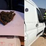 Secuestraron más de 120 dosis de marihuana cerca de Tolombón