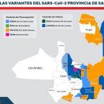 Ya se identificaron 5 variantes de coronavirus en toda la provincia